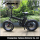 Manufacture 20 inch 500w fat tire folding mini electric bike