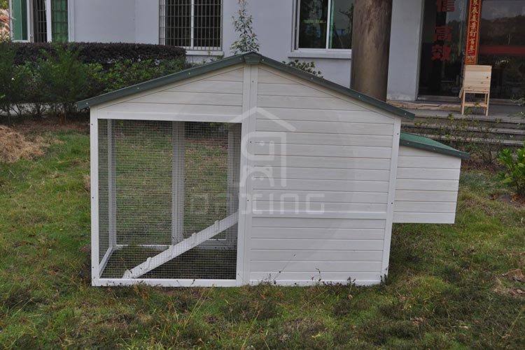 DXH027 outdoor hot selling amazing chicken coops