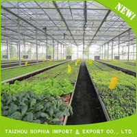 Factory sale various greenhouse plastic film