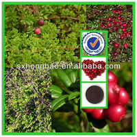 European Standard High Quality Anthocyanidins10%- 30% UV Cranberry Extract