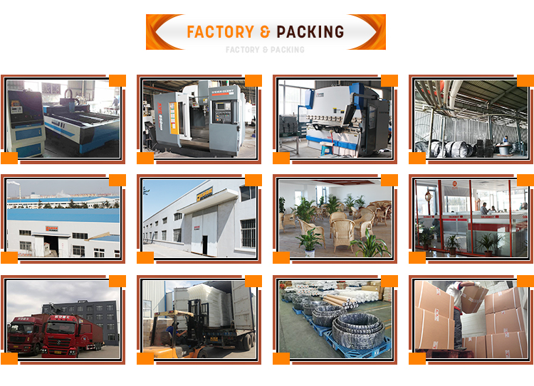 Factory and Packing.jpg