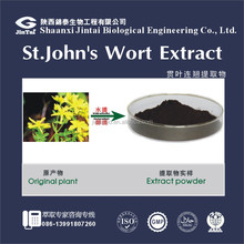 St.Johns Wort extract powder Hypericin