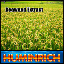 Huminrich Shenyang SY1001 Seaweed Extract Natural Plant Growth Promoter