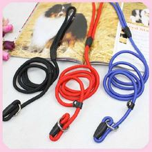 Good Quality Nylon Braided Dog Training Leashes and Collar Dog P Chain