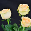 Professional Rose Artificial Flower For Flowers