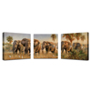 /product-detail/savannah-elephant-canvas-fine-art-modern-gallery-wrapped-wild-animal-giclee-canvas-print-set-of-3-60359084536.html