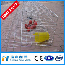 High quality poultry farm layer chicken cages