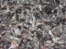 Shredded Steel Scrap 211