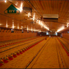 /product-detail/light-frame-steel-structure-poultry-house-with-automatic-poultry-farming-equipment-60754583527.html