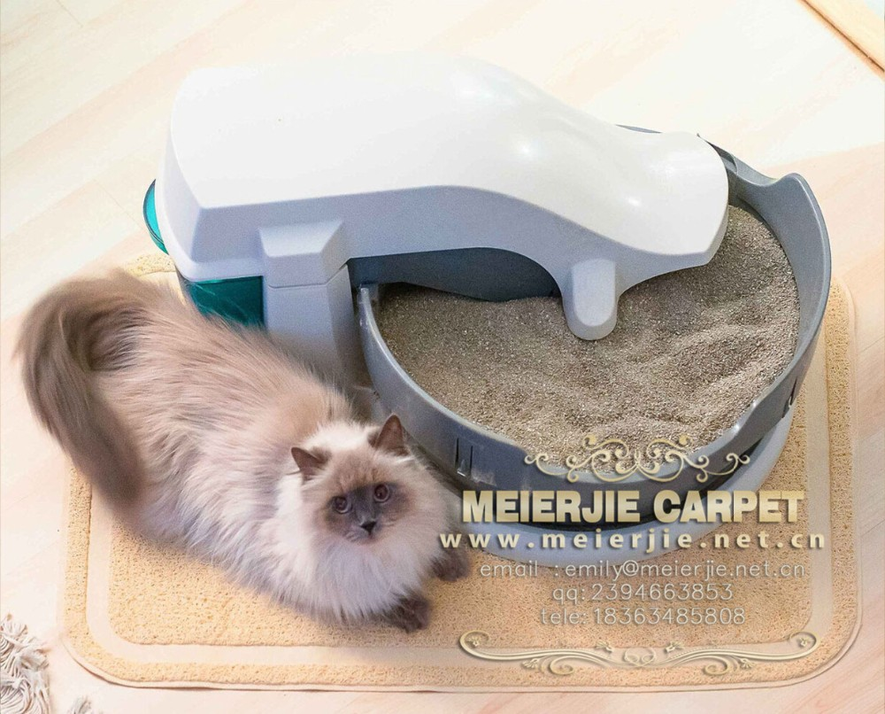 Can I Buy Cat C Car For Export