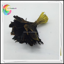 NO.1 Supplier WenCe Wholesale 4-6inch Length Colored Purple Stripped Coque Rooster Tail Feathers