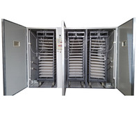 Large Multi-Stage 20000 eggs poultry eggs incubator price