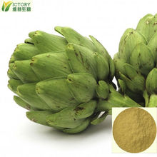 2014 wholesale 100% nature organic artichoke