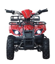 Wholesale adult electric atv for farm use