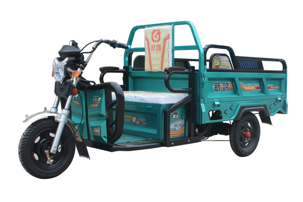 China 1200W adult electric tricycle for cargo or passenger/electric three wheel motorcycle