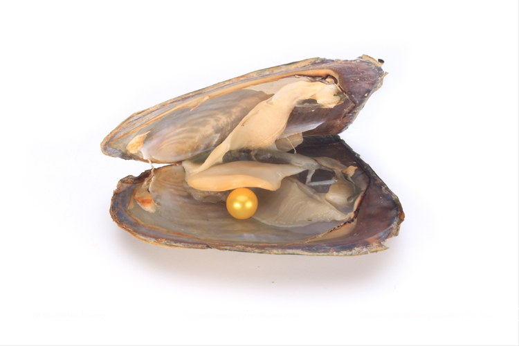 Hengsheng Wholesale 6-8mm Dark Gold Near Round Fresh Water Pearl Oyster for Making Beautiful Jewelry