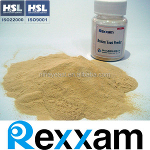 Quality Dried Sugar-cane Molasses Powder