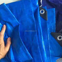 pe tarpaulin vietnam CLtarp CO.,LTD