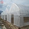 China factory direct pe vegetable garden greenhouse