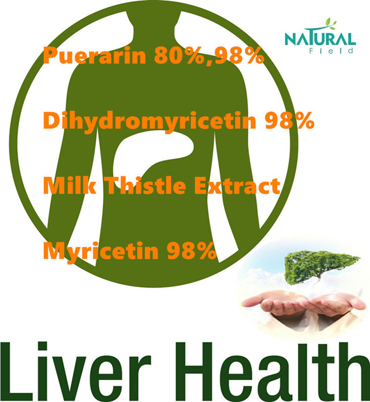 Chinese supplier DHM plant extract dihydromyricetin powder
