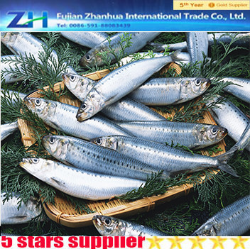 ingredient canned sardine fish sardine fish scientific name wholesale