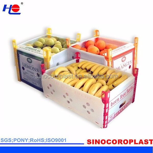 Plastic Fruit Packaging Box
