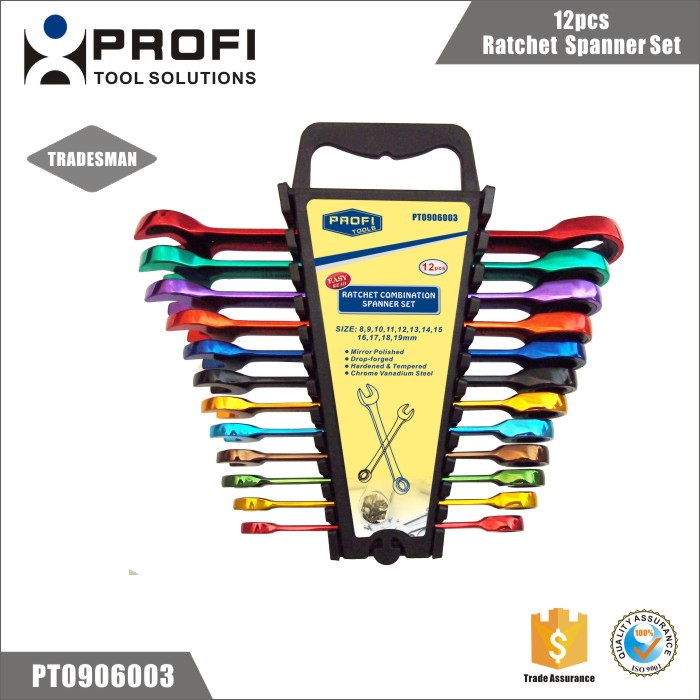 Alibaba China Supplier 12pcs Color coated Auto Repair ratchet box spanner set