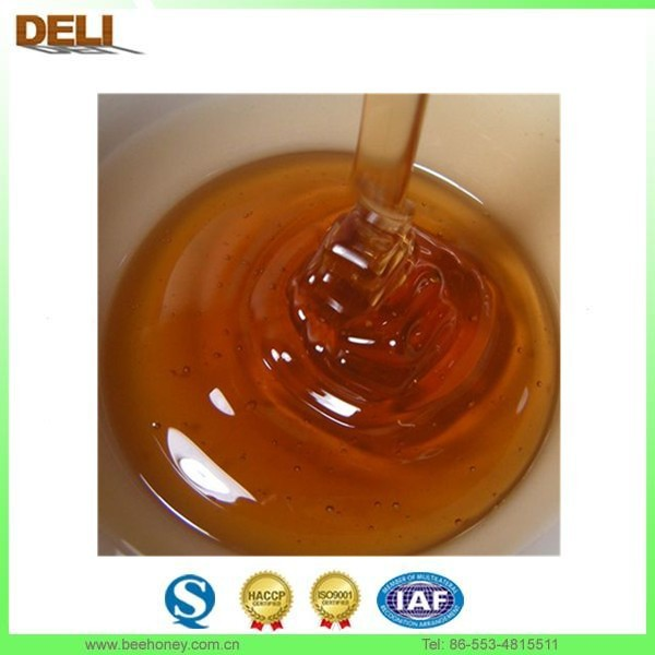 Supply 100% amber color Eucalyptus honey