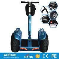 Electric self balancing two wheels smart scooter shilly car 2000 watts motor