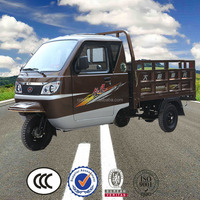 China BeiYi DaYang Brand 150cc/175cc/200cc/250cc/300cc cabin cargo tricycle three wheel motorcycle
