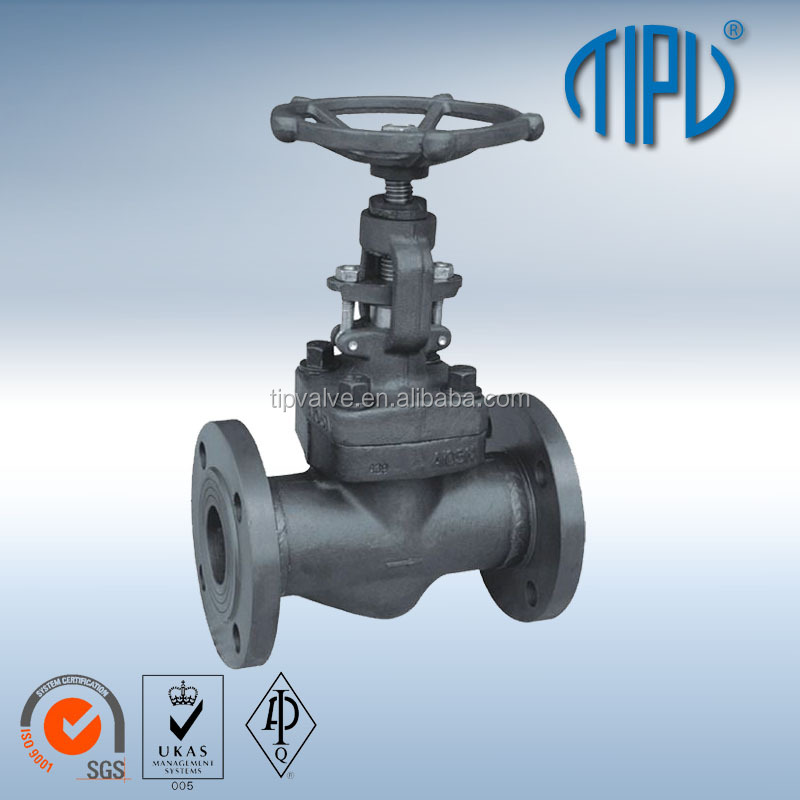 Forge Steel A105 Globe Valve