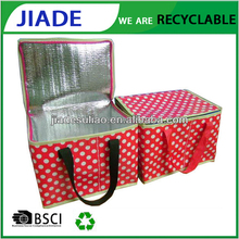 Plastic Ice Cream Wholesale Thermal Insulated Cooler Bags