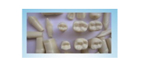 Natural-sized Permanent Teeth with Straight Roots study model Hot Sale Human Dental Teaching Models