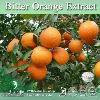 Factory Supply Bitter Orange Extract Synephrine Powder 6%~98%