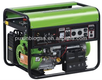 3kw small size biogas generator