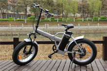 20inch Folding Mountain Fat Tire Electric Bike Bike Price In India Picture RSEB507