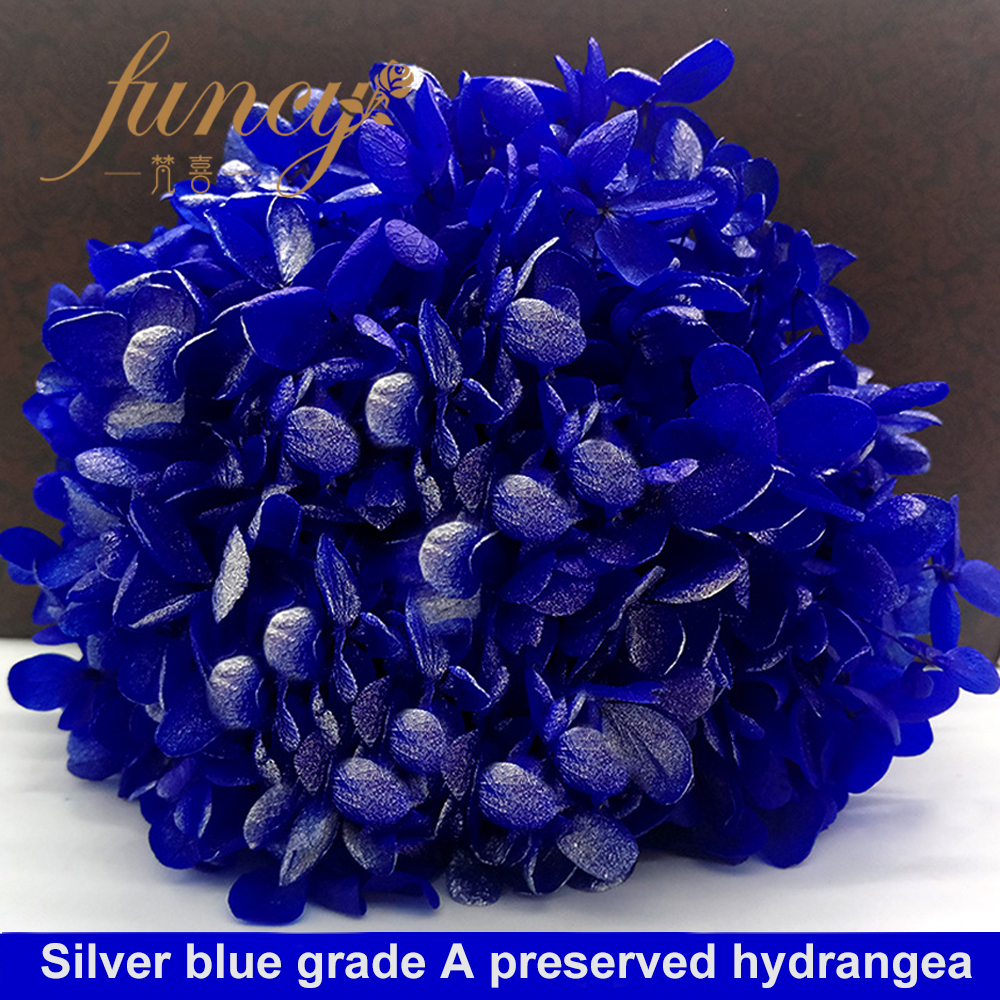 Factory Supply Grade A Real Touch Kunming Preserved Flowers Hydrangeas with 23 Colors Available
