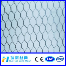 New Technology PVC Galvanized Hexagonal wire mesh / Hexagonal wire mesh fence