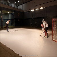 Ice Skating Rinks Synthetic Panel