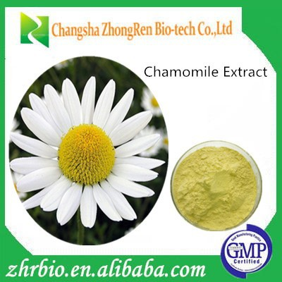 Low Price Chamomile Extract 10:1