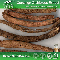 Hot sale Plant extract Curculigo Orchioides dry extract/Xian Mao root extract/Kali Musli extract