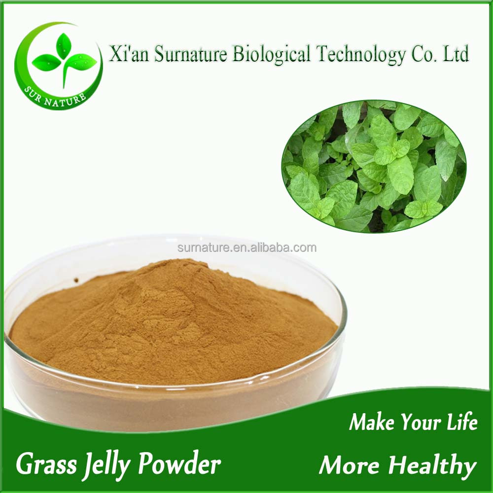 Factory supply natural grass jelly extract 4:1 10:1 20:1