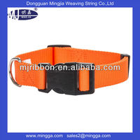 high quality buckle nylon dog collar for decorative