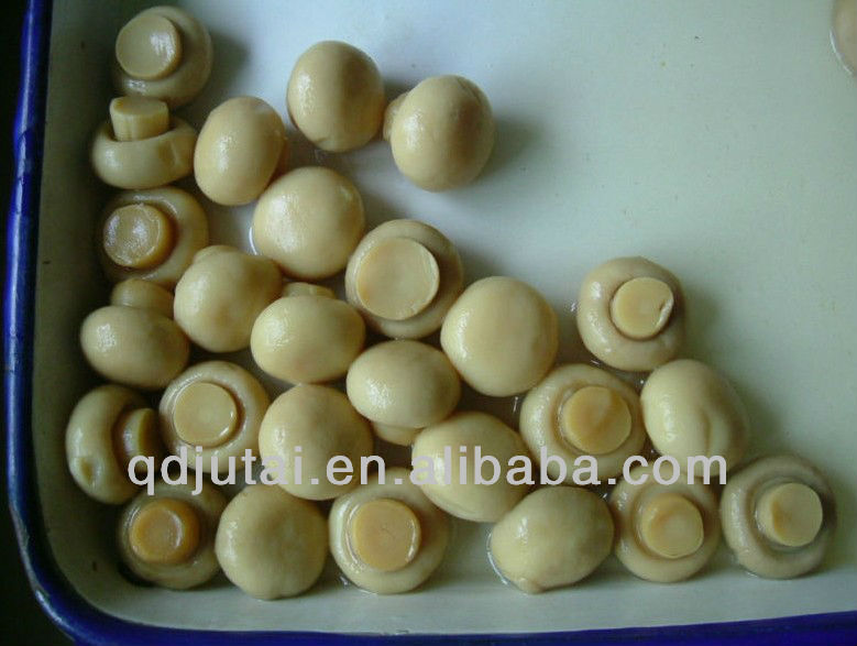 Hot Selling Canned Mushrooms Whole/Sliced/P&S from China