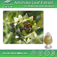 Liver Protection Artichoke Extract, Artichoke for Cholesterol and dietary supplement