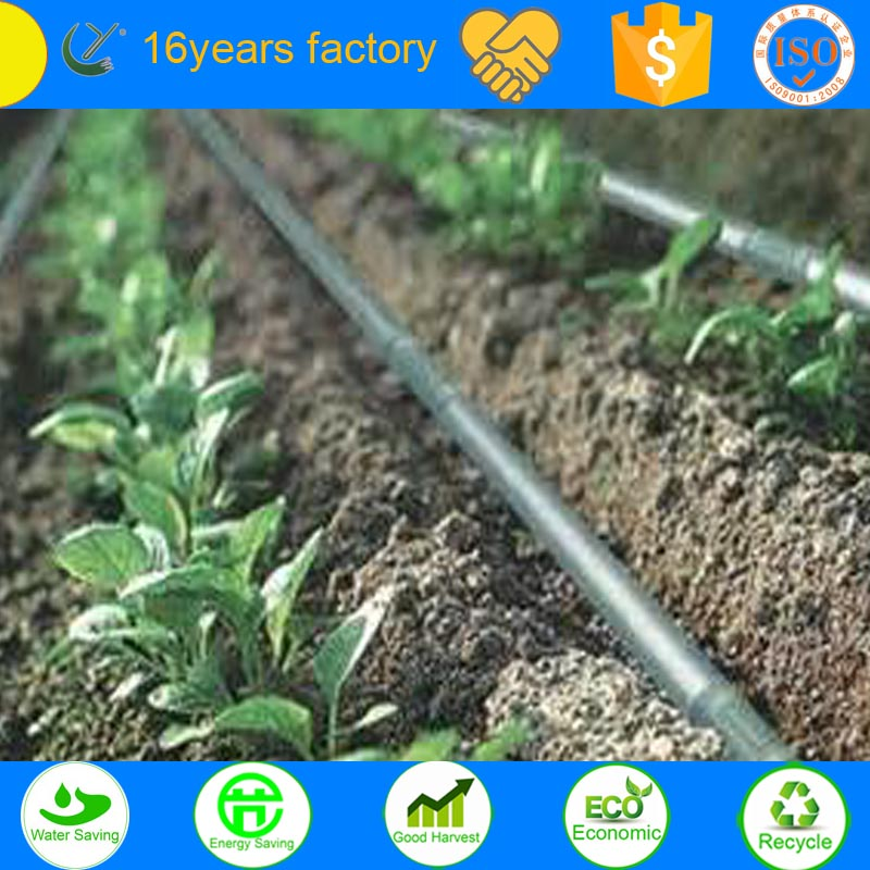 agriculture corn drip irrigation system project