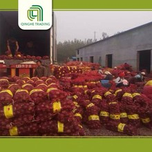 wholesale small onion  fresh shallot onion   for sale