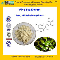 GMP Factory Supply 100% Natural and High Quality Vine Tea Extract