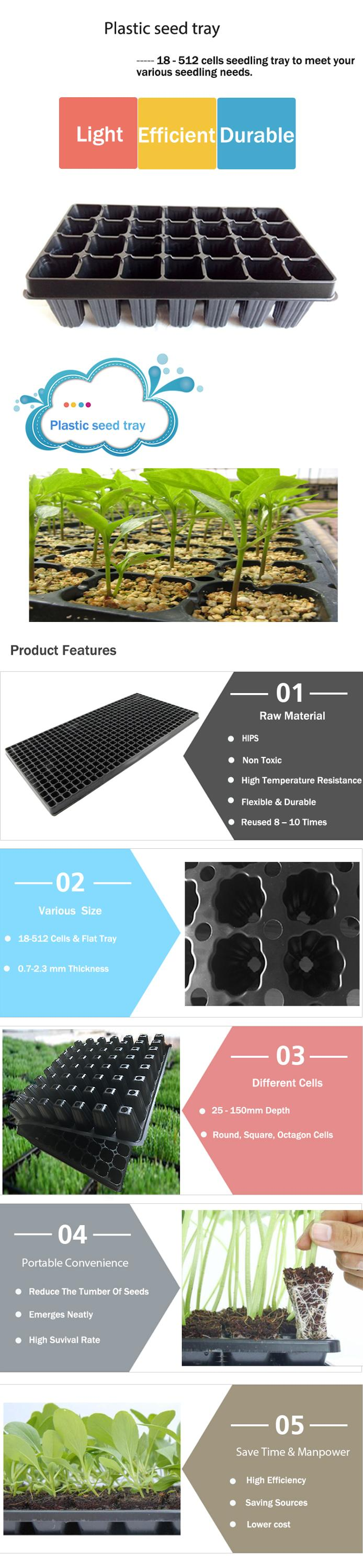 20*10 inch Black PS Material Rice Growing Tray For Seedling