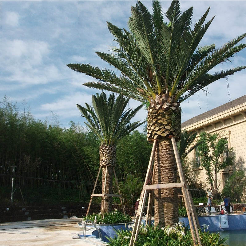 Outdoor waterproof long lift imitative fake coconut tree artificial tree, Phonix Palm landscape trees